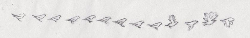 Bird Animation Deconstruction